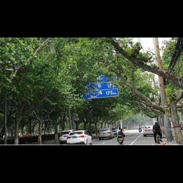 交通标志牌 城市文明程度的象征